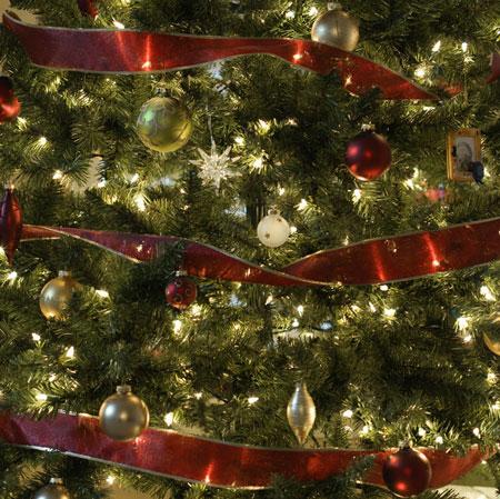 Parker Christmas Tree Festival