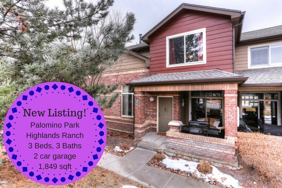 6482 Silver Mesa Dr In Palomino Park In Highlands Ranch