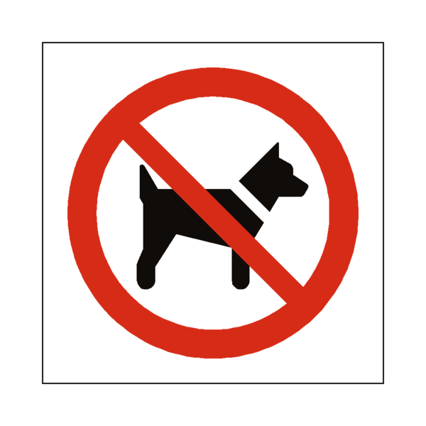 FIREWORKS IN PARKER CO 2018 NO DOGS