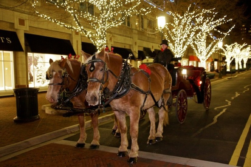 Parker CO Holiday Carriage Rides 2018